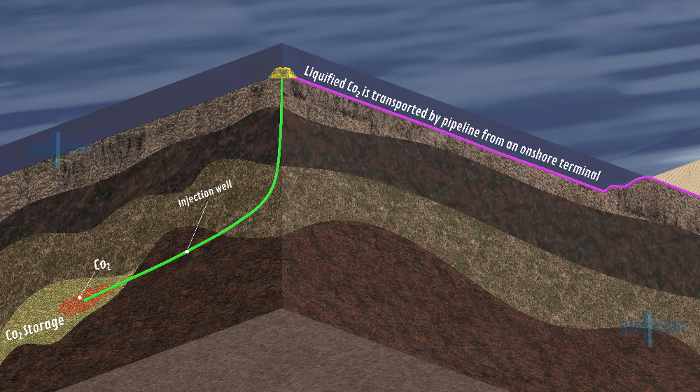 Materials to remediate leakages from Carbon Capture Storages (CCS)