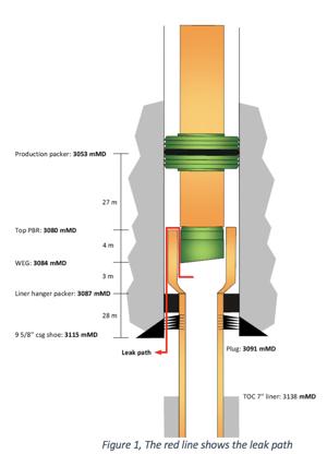 leak path - figure 1