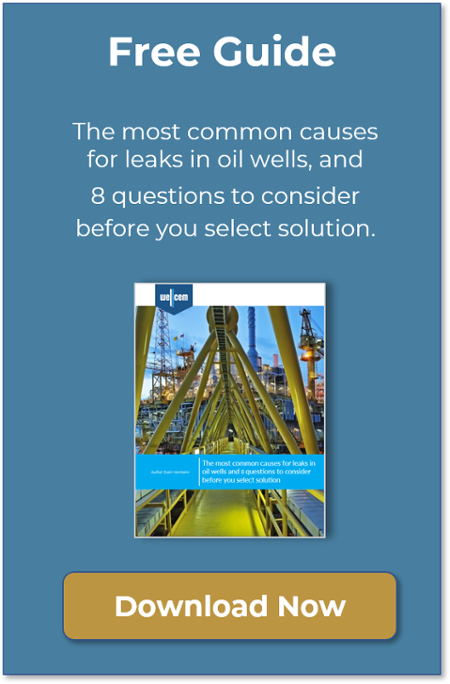 [Free Guide] The most common causes for leaks in oil wells and 8 questions to consider before you select solution